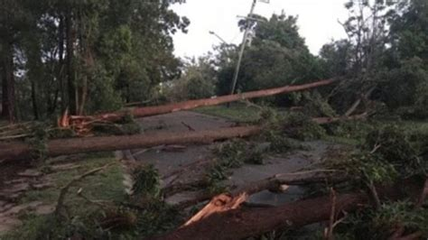Australia Zoo closed after Queensland storm