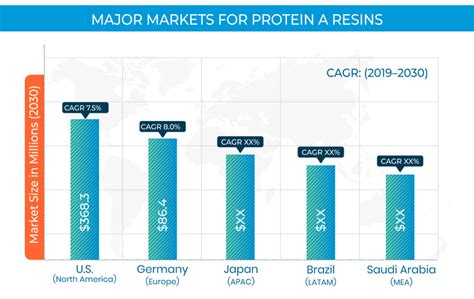 Protein A Resin Market Size, Share, Trends and Forecast to
