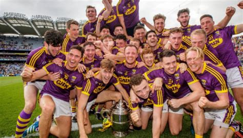 Current Wexford Hurler Elected Secretary Of Gaelic Players