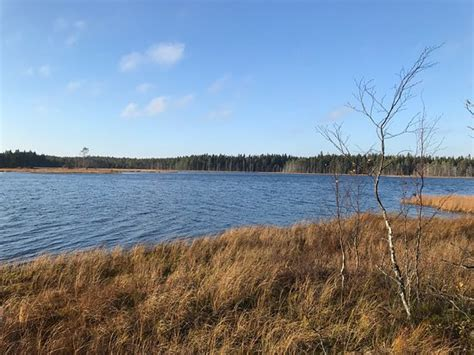 Grossjon Nature Reserve (Umea) - 2020 All You Need to Know