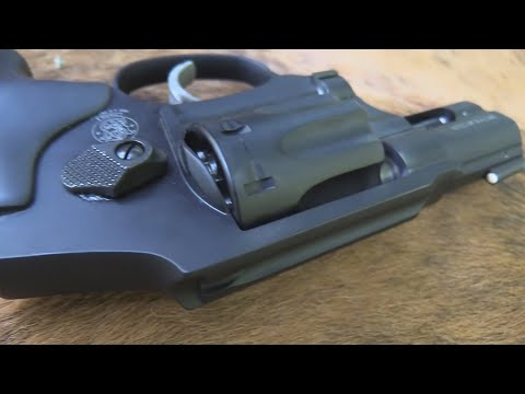 Revolvers Only: Smith & Wesson 617: The Perfect Target